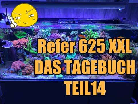 reefer-tagebuch-teil-14