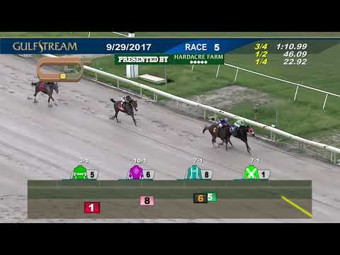 Gulfstream Park Replay Show | September 29, 2017