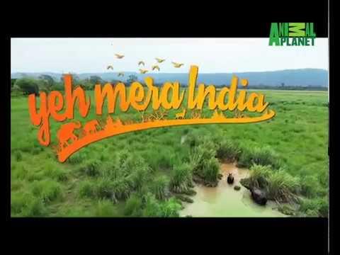 Teaser 2   Yeh Mera India