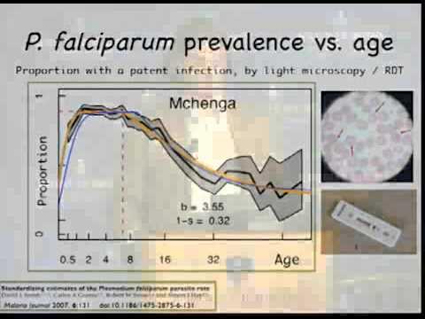 Theory for Malaria Eradication - David L. Smith, PhD
