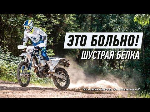 Лучшее видео про мотоциклы в лесу!