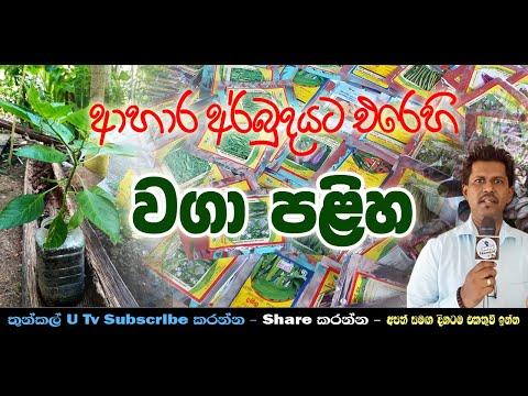 Wagaa Paliha (වගා පළිහ) Thunkal U Tv
