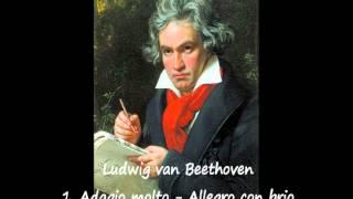 Beethoven : 1. Adagio molto - Allegro con brio