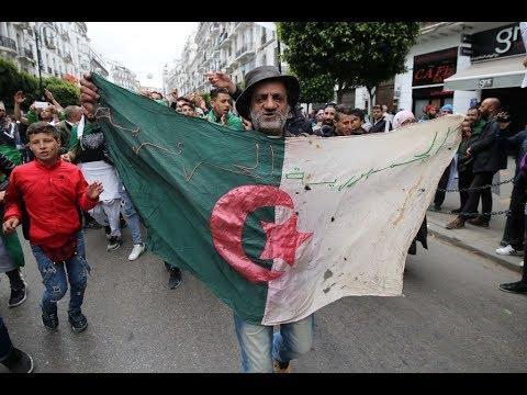 الجزائر: مقربون من بوتفليقة في الحبس المؤقت  - نشر قبل 2 ساعة