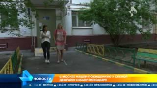 Слепой москвичке вернули пропавшую собаку-поводыря
