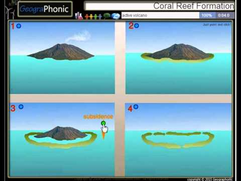 four stages of coral reef formation