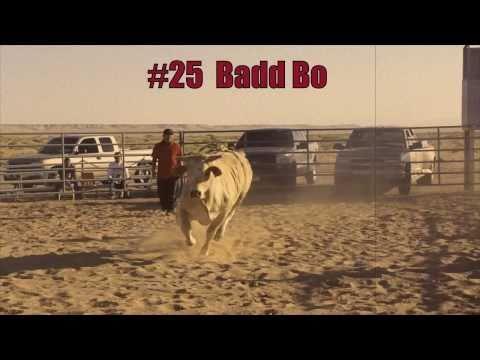 Badd Bo 2010~SOLD!!!!!