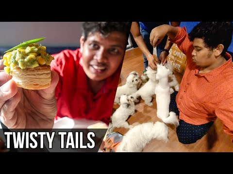 Food With Puppies - Twisty Tails, Chennai.