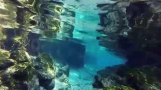 Beautiful Kings Bay and Three Sisters Spring,Crystal River Florida