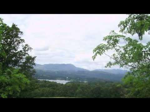 Snowbird - Anne Murray (Cover)