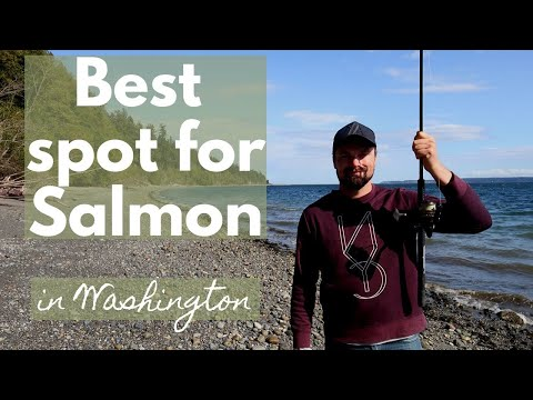 Salmon Fishing In Washington -  Best Spot So Far!