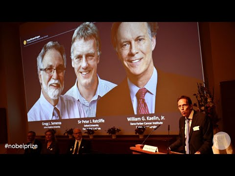 Announcement of the Nobel Prize in Physiology or Medicine 2019