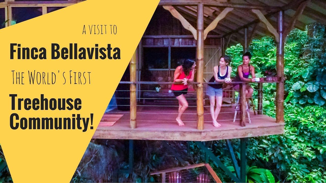 finca bellavista the world u0027s first treehouse community in costa