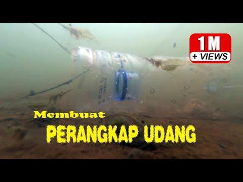 Cara Membuat Perangkap Udang (with underwater scene)