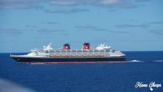 Disney Magic Vs Wonder Cruise Ship Horn Battle Showdown on Halloween