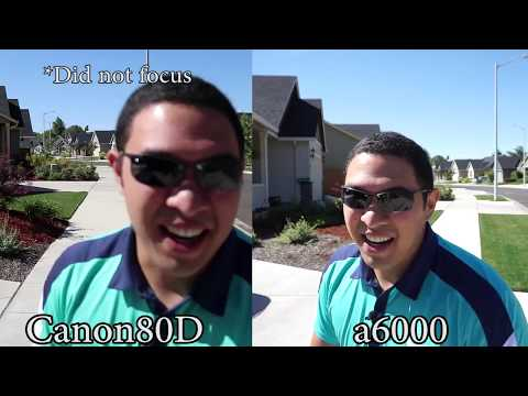 Sony Vs Canon Auto Focus Comparison   a6000 vs 80D + Kit Lenses Sony 16-50mm Canon 18-55mm