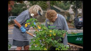 Los Gatos Rotary Rebuilding Project Oct 28th 2017 (Full version)
