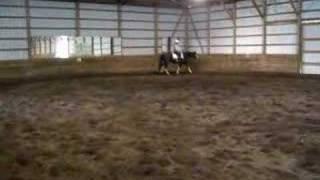 Walking Horse Gallop (Don't laugh...)