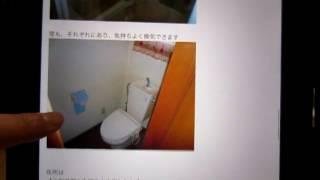 【11/4】賃貸不動産メールマガジン情報。尾野真千子(身長161cm)、山本...