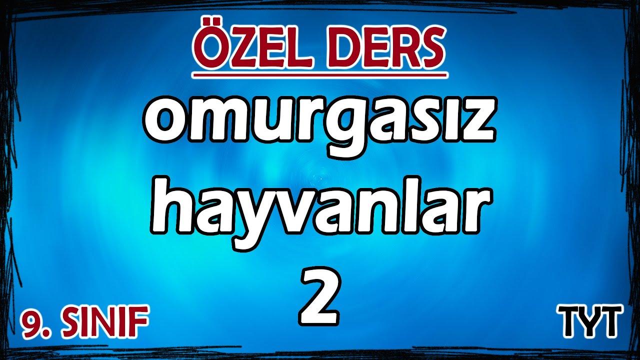 26) Hayvanlar Alemi - Omurgasız Hayvanlar 2 - Özel Ders (9. Sınıf)