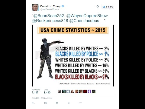 Donald Trump retweets neo-nazi graphic on black crime