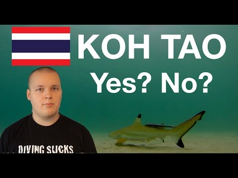 Should You Travel to Koh Tao?