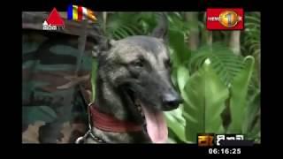 පැතිකඩ   Pathikada Sirasa TV 17th May 2019 Thumbnail