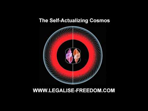 Ervin Laszlo - The Self Actualizing Cosmos