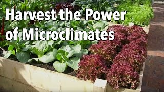 Harvest the Power of Microclimates