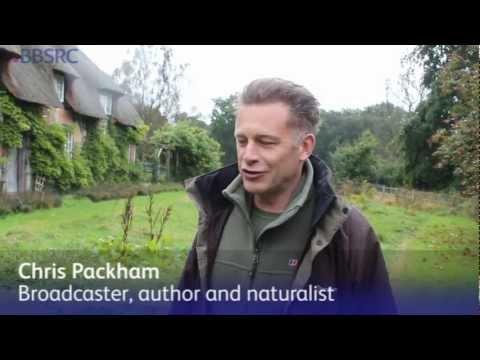 Chris Packham's soil metagenomics: Biology Week 2012
