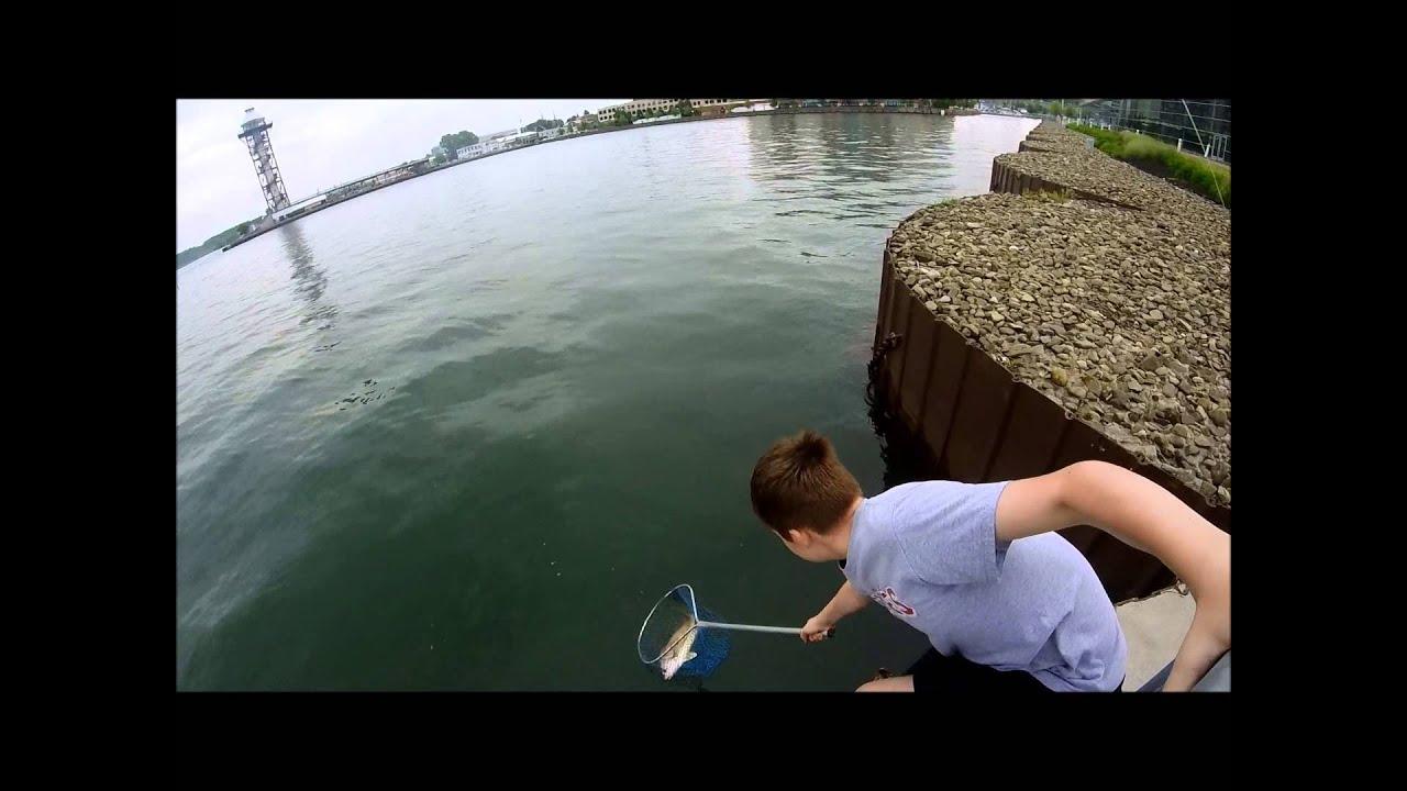Fishing for sheepshead freshwater drum on presque isle bay for Presque isle bay fishing report