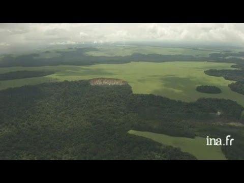 Gabon : plaine littorale près de Libreville