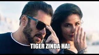 tiger zinda hai movie review & unknow facts | Salman Khan and Katrina Kaif