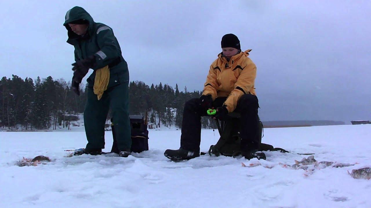 рыбалка ловля толстолобика
