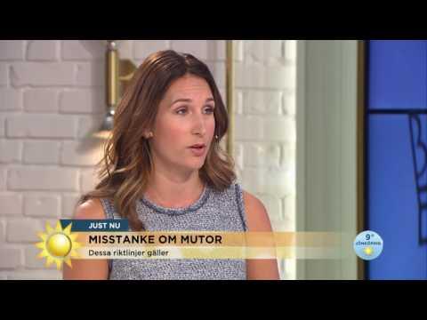 Misstänkta för mutbrott - så vet du om gåvan är en muta - Nyhetsmorgon (TV4)