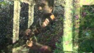 YouTube ai ajnabi dil se violin solo by Ayoub
