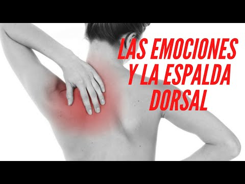 La espalda zona dorsal y emociones