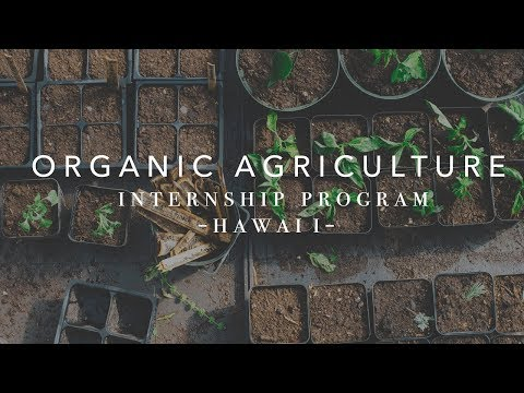 Organic Agriculture Internship - Big Island Farms