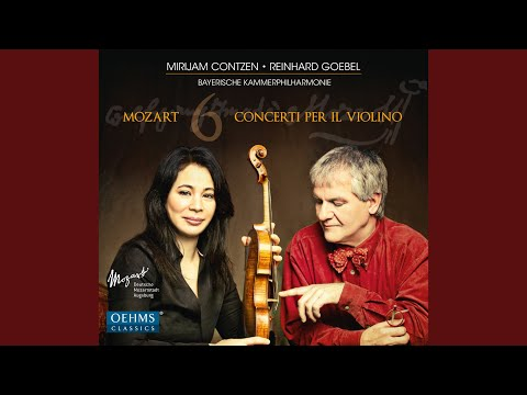 Violin Concerto No. 4 in D Major, K. 218: II. Andante cantabile