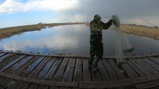 Рыбалка На Кастинговую Сеть Сибирский Мост В Секретном Месте