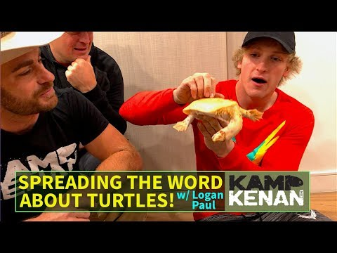 Bringing My Turtle to Logan Paul, the Real Story Behind the
