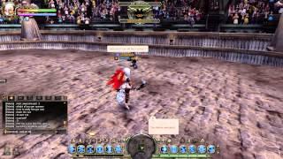 Dragonnest~ Warden/Artillery  DMG | STUN Transfer