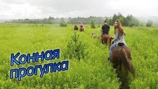 Прогулка на лошадях   Конный клуб «Аллюр»