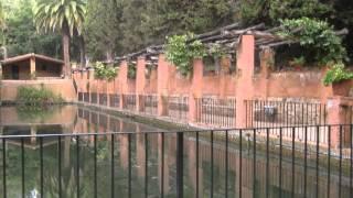 Ботанический сад  -