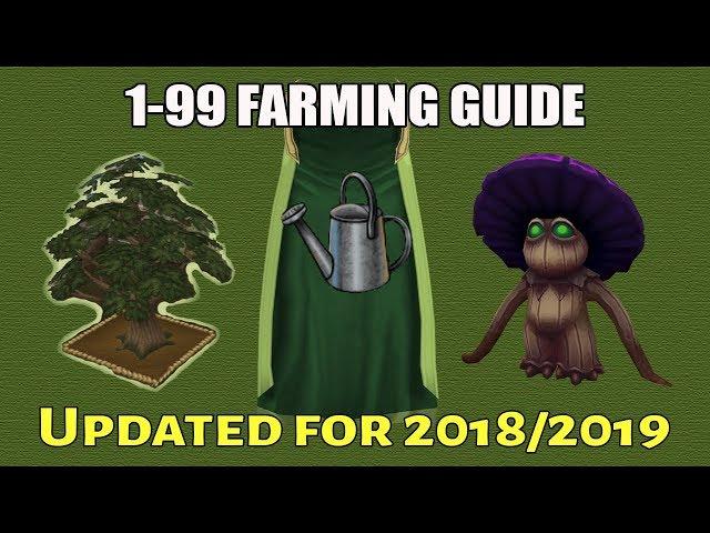 RuneScape 3: 1-99 Farming Guide