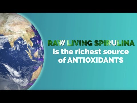 Raw Living Spirulina | World's Most Perfect Food | The Future of Nutrition