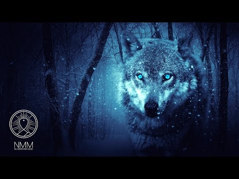 "Native American Flute : ""Wolf Instinct"" Meditation  for Shamanic Astral Projection 41804N"