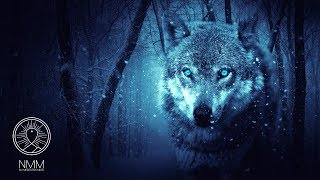 "Native American Flute Music: ""Wolf Instinct"", Meditation Music for Shamanic Astral Projection 41804N"