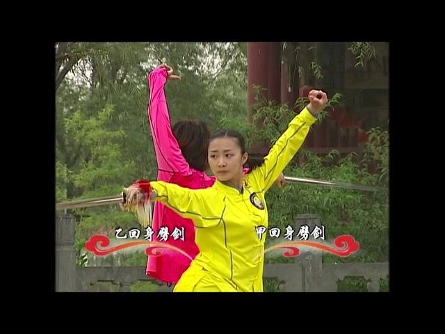 Jianshu 5 duan wei Chinese Wushu Duanwei 剑 straight sword