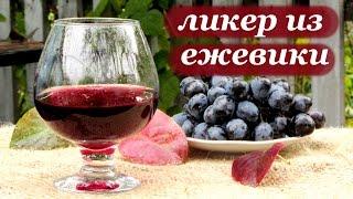 Рецепт ликера из ежевики от Алкофана
